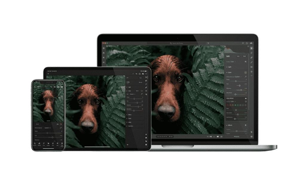 Adobe Lightroom image